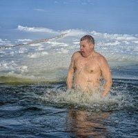 Крещенские купания :: Александр Бойко
