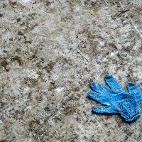 зима нам бросила перчатку :: StudioRAK Ragozin Alexey
