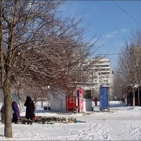 Приём стеклотары на морозе :: Нина Корешкова