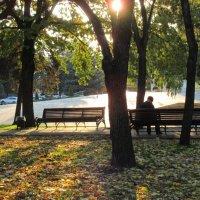 Осень в парке. :: Вячеслав Медведев