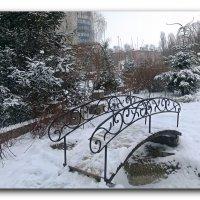 Выпал беленький снежок. :: Чария Зоя