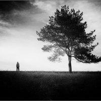 человек и дерево :: Jiří Valiska
