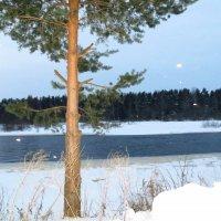 Зимние пейзажи января. :: ВАЛЕНТИНА ИВАНОВА