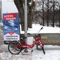 всё смешалось и зимОЙ :: Олег Лукьянов