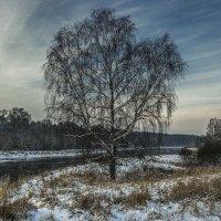 Немножко зимы :: Peiper ///