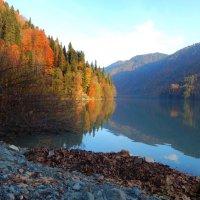 Озеро Рица :: Юлия Ненахова