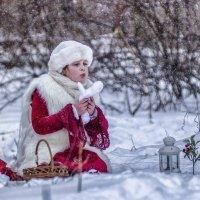 12 Месяцев. Январь. :: Константин Железнов