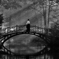 в осеннем парке... :: Виктор Перякин