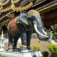 Таиланд, разное (3) :: Владимир Шибинский