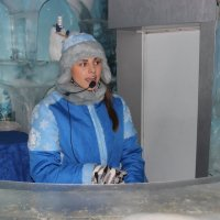 хозяйка ледяной комнаты :: Дмитрий Солоненко