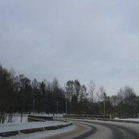 Если дорогу прокладываешь сам, каким будет поворот, тебе виднее ..... :: Tatiana Markova