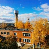 Осень :: Дмитрий Скачков
