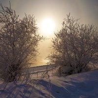 Холодный полдень :: Анатолий Иргл