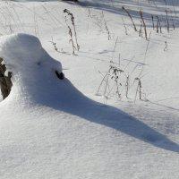 Лесной Дед Мороз :: Елена Шемякина