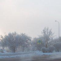 Зимнее утро в городе :: Николай Н