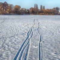 следы на снегу :: юрий иванов