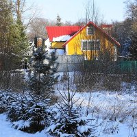 Зима в городе :: Маргарита Батырева