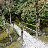 Японский сад Храма Гинка-кудзи Киото :: Swetlana V