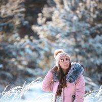 Зима :: Алексей Силин