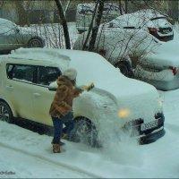 Снежные будни :: °•●Елена●•° ♀