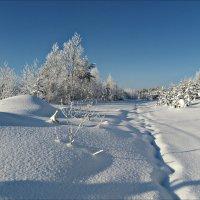 Свежий снег :: Leonid Rutov