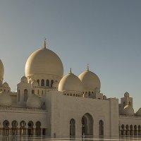 Белая мечеть :: Gennadiy Karasev