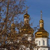 Купола :: Дмитрий Сиялов