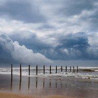 Будет дождь :: Alex Molodetsky