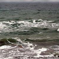 над седой равниной моря... :: Александр Корчемный