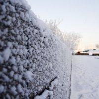 Холода :: Виктория Большагина