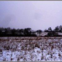 Забытая деревенька... :: Vladimir Semenchukov