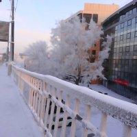 Иркутск -40 С :: Юрий Николаев