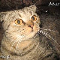 Mars :: OLLES