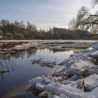 Весенний ледоход на Западной Двине. :: Елена Струкова