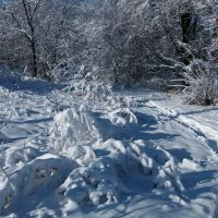 Чародейкою Зимою околдован, лес стоит! :: Наталья