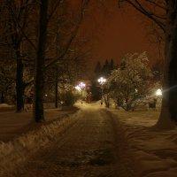 Зимний вечер :: Екатерина Кучко