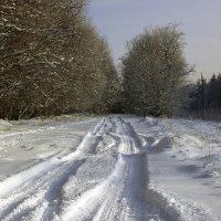 заснеженная дорога :: оксана