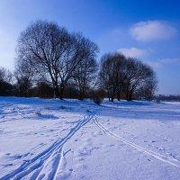 Зимний пейзаж ... :: Лариса Корж