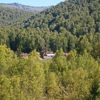 заимка в лесу :: vladimir polovnikov