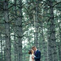 Свадебная прогулка :: VikTori Knyazeva