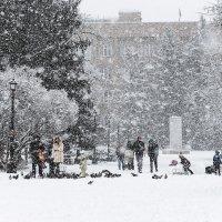Зима :: Inga Tokar