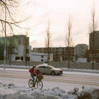На зимней улице :: Aнна Зарубина