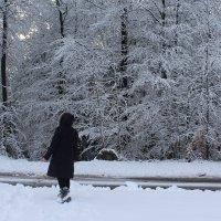 В зимнюю сказку.... :: Mariya laimite