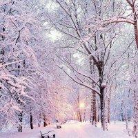 Чародейкою зимою... :: Ирэн