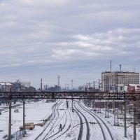 Сегодня нас посетила зима :: Игорь Сикорский