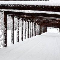 Портал .  Снежинка в коридоре ...:) :: Анатолий Колосов