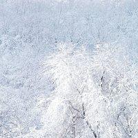 А за окном белым-бело! :: Наталья