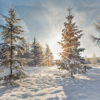 #зима #ОМСК #СИБИРЬ :: Александр Иващин