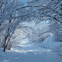 Чародейка зима! :: Наталья