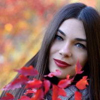 Красная осень :: Сергей Добрыднев